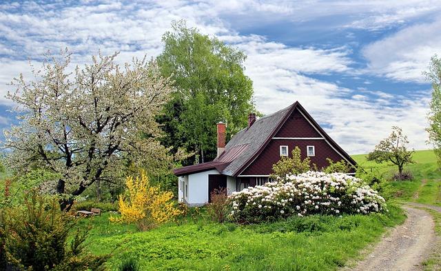 Paillis gratuit pour votre jardin